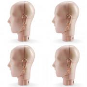 Jaw Thrust Head Assemblies for Prestan Adult Light Skin Manikin (4-Pack)